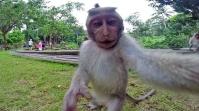 banorer selfi
