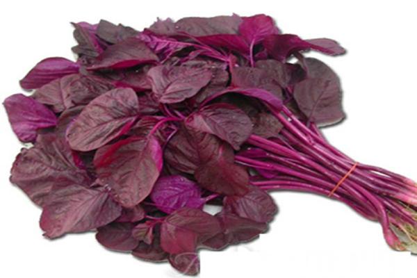 Lal Shak red vegitable.jpg
