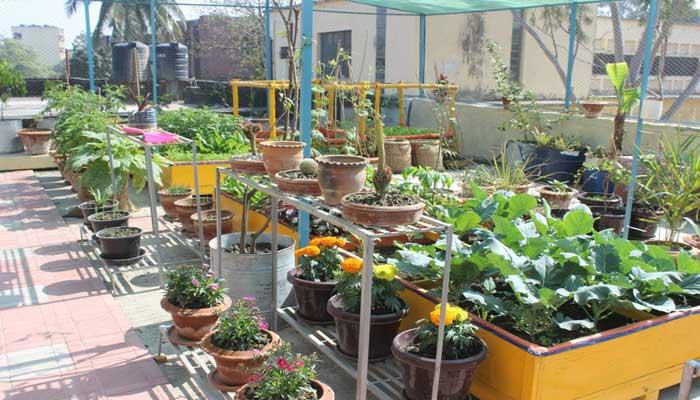 Sade bagan, garden