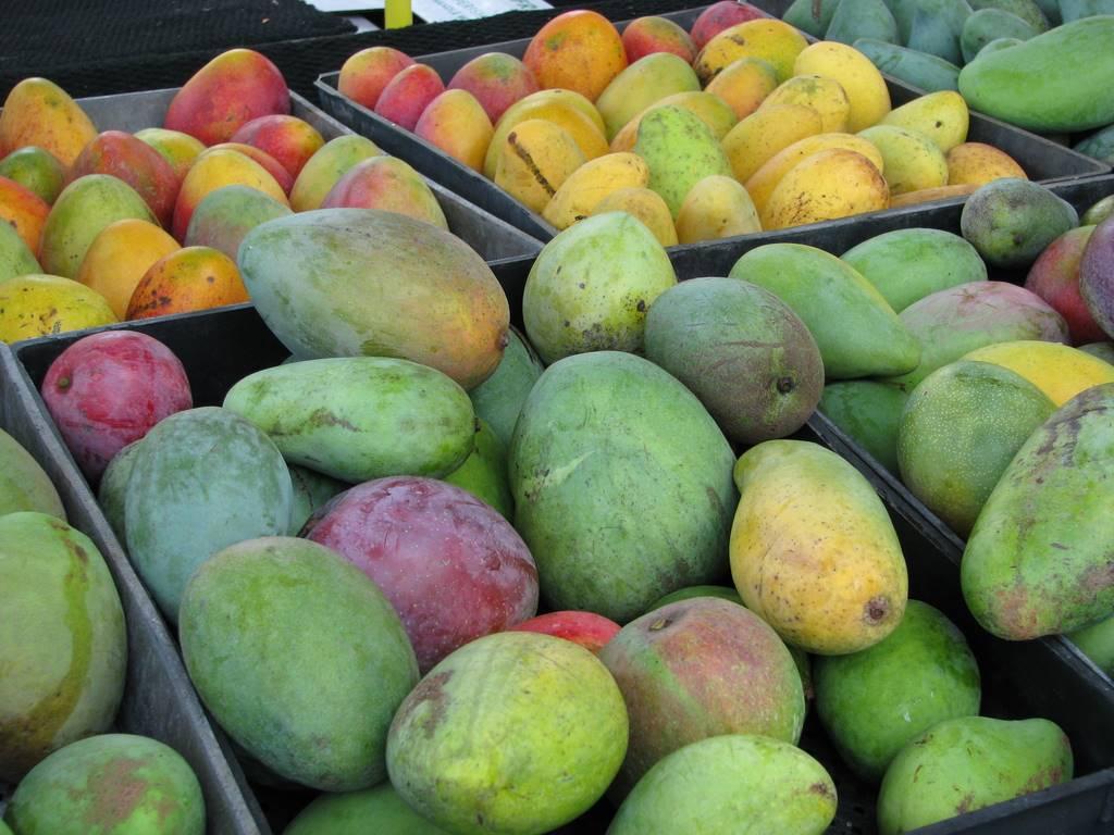 mango, aam