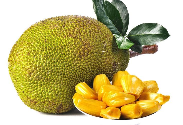 kathal, jackfruit seed.jpg