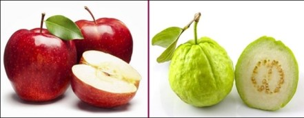 Apple-vs-Guava.jpg